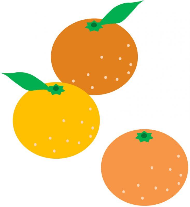橙とみかんの違いって?鏡餅にのせるのは橙とみかんのどっちなの?橙レシピもご紹介!